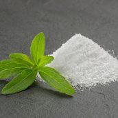 Stevia je snov, ki jo potrebujete